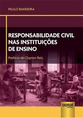 Imagem de RESPONSABILIDADE CIVIL NAS INSTITUICOES DE ENSINO